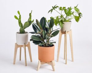 plant stands, plywood plant stands, plant stand, modern plant stand